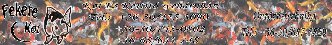 Fekete-koi webáruház